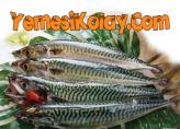 Uskumru Balığı Dolması
