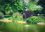 Botanik Bahçe Tarifi