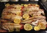 Fırında Palamut Balığı Tarifi