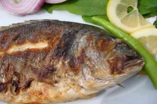 Izgara turna balığı