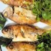 Mercan Baliği Tavasi Tarifi