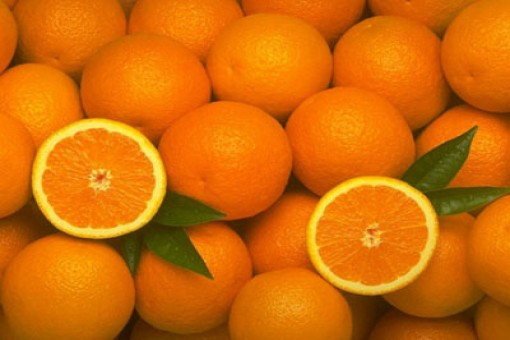 Portakallı Semizotu Lahana Sa