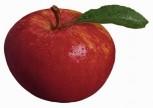 Sütlü Elma Tatlısı Tarifi