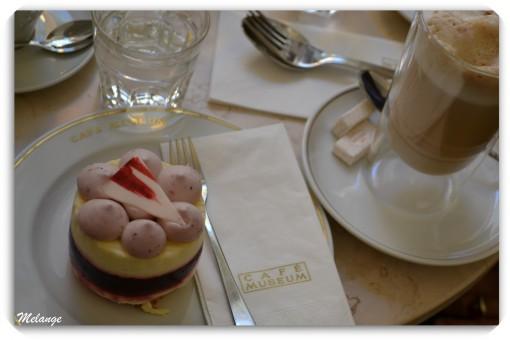 Viyana Keki Avusturya Mutfağı